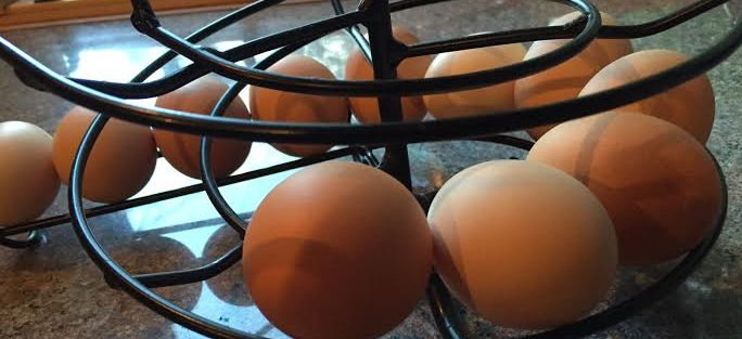 Should you feed eggshells to chickens?