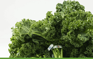 Delicous kale recipe - good for your baby boomer diet!